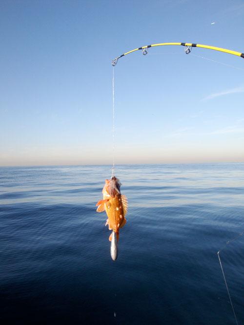 10_30_2011fishing4