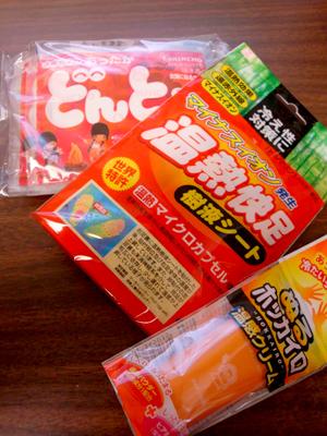 3_8_2010hokkairo