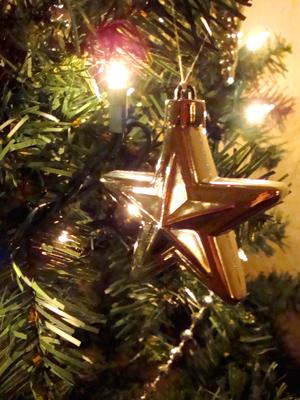 christmas12_3_2009