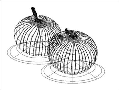 onion1_8_11_2009_3