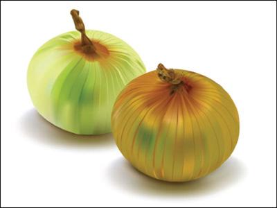 onion2_8_11_2009_4